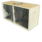Purchasing 2017 Package Bees